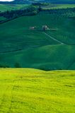 Italian fields stock photography