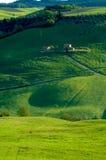 Italian fields Royalty Free Stock Photography