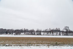 Italian fields covered by snow Stock Photography
