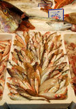 Fish for sale in Italy. Assorted fresh fish on display at a market in Fiumicino, Italy Stock Images