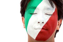 Italian flag portrait Stock Photography