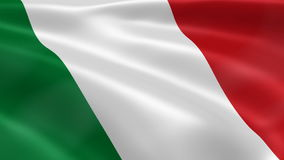 Italian flag in the wind stock video