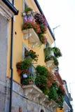 Italian flowered balconies Royalty Free Stock Image
