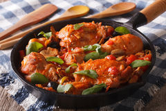 Italian food: chicken with tomato and vegetables. horizontal Royalty Free Stock Photo