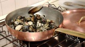 Italian food, clams stock video