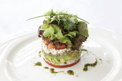Italian food crab timbale Stock Image