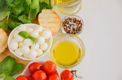 Italian food ingredients – mozzarella, tomatoes, basil and olive oil Stock Image