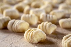 Italian food speciality: hand made potato gnocchi on a wooden board, ready to be cooked. Home made and hand rolled on a fork. Close up, selective focus royalty free stock images