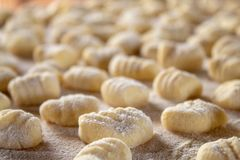 Italian food speciality: hand made potato gnocchi on a wooden board, ready to be cooked. Home made and hand rolled on a fork. Close up, selective focus stock image