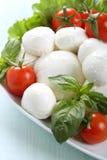 Caprese mozzarella tomatoes and basil in ceramic bowl Stock Photography
