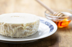 Italian  fresh goat cheese Stock Photo