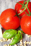 Italian fresh tomatoes and other pasta ingredients on a rustic table Royalty Free Stock Photos