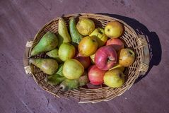 Fruit basket with red and yellow Apples and some Pears Royalty Free Stock Image