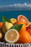 Italian fruits Stock Image