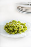 Italian fusilli pasta and pesto Royalty Free Stock Images