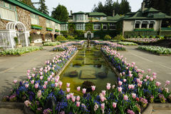 Italian garden landscaping Stock Image
