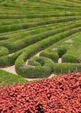 Italian garden in a park Royalty Free Stock Image