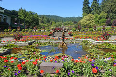 Italian garden. Picture of part of the Italian garden, at Butchart gardens,Victoria,BC,Canada Stock Photography