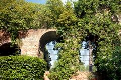 Italian garden Stock Image
