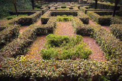 Italian garden Royalty Free Stock Photography