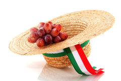 Italian grapes Stock Images