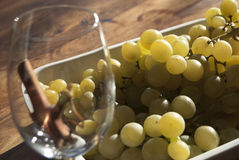 Italian grapes Royalty Free Stock Photos