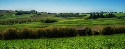 Italian green fields landscape Royalty Free Stock Photos