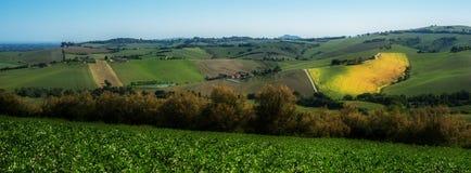 Italian green fields landscape Stock Photo