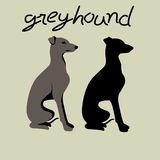 italian greyhound vector illustration style Flat silhouette royalty free illustration