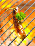 Italian grilled sausage Royalty Free Stock Photography
