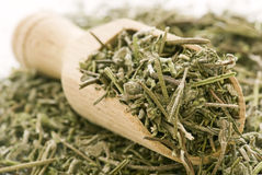 Italian Herb Mix royalty free stock photo