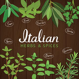 Italian herbs and spices Stock Images
