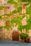 Italian Home with Vine Covered Front. Vine Covered Wall of a Home in Village of Orvieto with Windows and Arched Entrance Door royalty free stock photos
