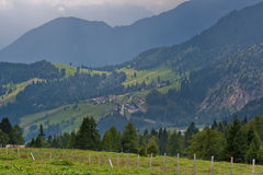 Green Alpine landscape. Scenic view of green forested Alpine landscape with mountains in background, Northern Italy Stock Images