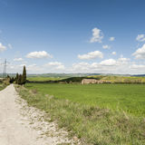 Dirt road between meadows in Italy Stock Photography