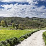 Italian landscape with dirt roads. Italian landscape with forests, meadow and dirt roads. Agriculture in Italy, fields and pastures stock images