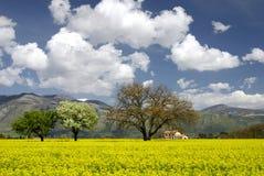 Italian Landscape in Spring Stock Image