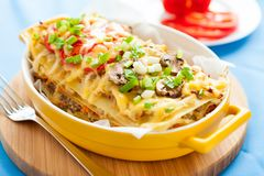 Italian lasagna with vegetables Stock Image