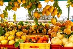 Italian lemons at Amalfi coast, Italy. Delicious Italian lemons at Amalfi coast, Italy Royalty Free Stock Photography