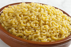 Italian macaroni in a dish Royalty Free Stock Photo