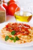 Italian macaroni pasta with tomato sauce. Traditional italian macaroni pasta with tomato sauce and oregano Royalty Free Stock Photos