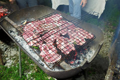 Italian meat grilled Royalty Free Stock Image