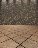 Italian mosaic tiled hallway - Background. Italian mosaic tiled hallway illuminated by spotlights Stock Image