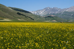 Italian mountain village Castelluccio. Beautiful view of the old italian mountain village Castelluccio, picturesque Apennine landscape, Norcia, Italy Stock Photos