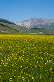 Italian mountain village Castelluccio. Beautiful view of the old italian mountain village Castelluccio, picturesque Apennine landscape, Norcia, Italy Royalty Free Stock Photo