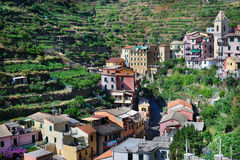 Italian mountain village Manarola Stock Image