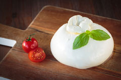 Italian mozzarella burrata. Delicious italian Burrata mozzarella cheese made with fresh milk royalty free stock images