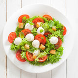 Italian mozzarella cheese and tomato salad Stock Photography