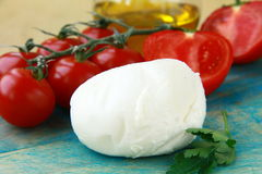 Italian mozzarella cheese tomatoes Royalty Free Stock Photo