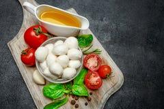 Italian mozzarella cheese and tomatoes. Caprese salad ingridients. Italian mozzarella cheese and tomatoes isolated on concrete background. Caprese salad Stock Image